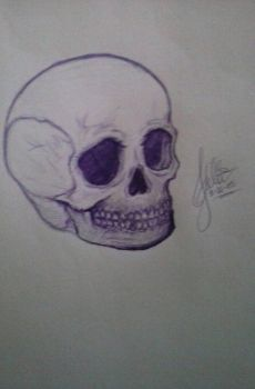 Purple skull by KittKitt