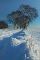 winter road by Wilithin