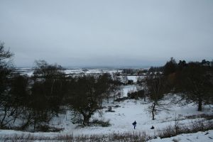 Marston Vale in Winter by tammyins