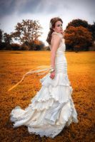 Bridal Gown Photoshoot 8 by Shooter1970