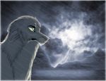 .: Caught In The Storm :. by MorningAfterWolf