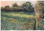 Evening Meadow by h-i-l-e-x
