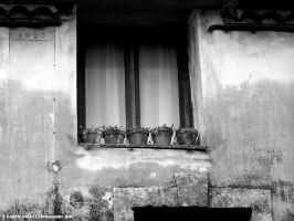 when water became scarce by Behind-walls