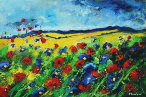 red and blue poppies by pledent
