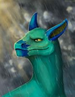 Thunderstorm by R-r-ricko