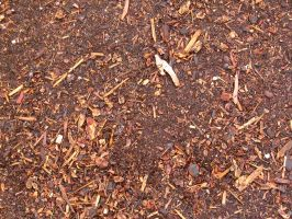 Texture - bark mulch. by Regenstock