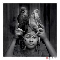 Pigeon's hand by djati