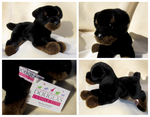 Douglas Medium Floppy Dogs - Spencer Rottweiler by The-Toy-Chest