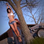 Evening at the farm 1 by Strutter79