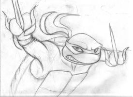 Raph drawing uncolord by zimaro