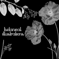 Botanical Illustrations 1 by butnotquite