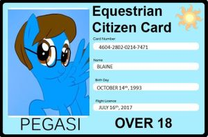 Blaine's Equestrian Citizen License by RarityLuver214