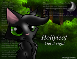 Hollyleaf-Get it right by SSDOGZII