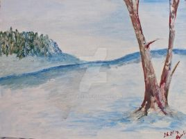 Winter landscape by MytaBes