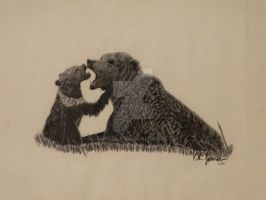 Grizzly Bear and Cub by jeepgirl85
