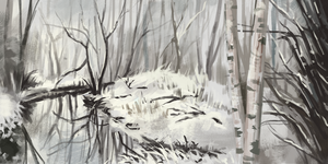 Environment study - Snowy forest by IceRider098
