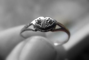 With this ring . by velar1