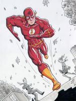 The Flash by calslayton