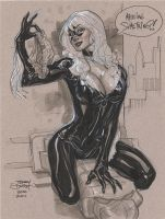 Black Cat 2 ECCC 2011 by TerryDodson
