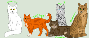 Favorite Warrior Kitties by Tangerine282