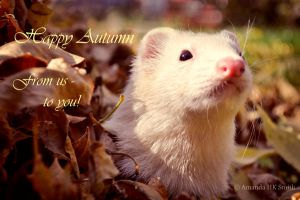 Sid's Autumn Greetings by adevilsdare