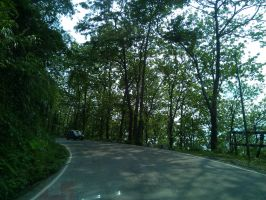 Street-trees-hill.jpeg by Subhodeep07