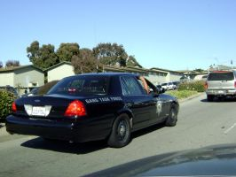 Gang Task Force COP Crown Vic by Partywave