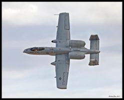 Warthog Pass in Review by AirshowDave