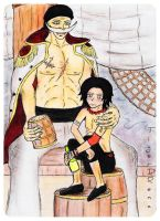 whitebeard and ace by TigerDRena