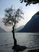 Lake in Italy by palmboompie