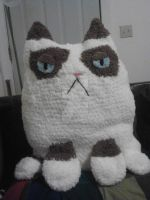 Grumpy cat pillow by Amigurumi-Lover