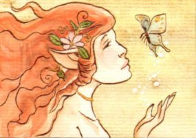 4 Dreamy Fairies Series ACEO by vrm1979