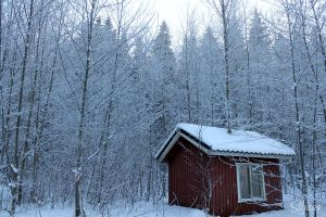 Small cottage in winter by Siljaas