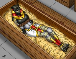 Mummy for shipping (gagged) by geekling