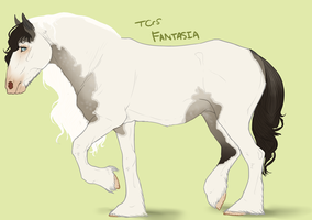 TCrS Fantasia by noebelle