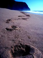 Footprints at the sand by Filianthur