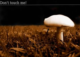 Don't touch me by Hocusfocus55