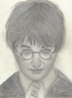 Harry Potter by Darth4114