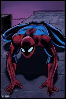 Spider-Man (Color) by crow110696