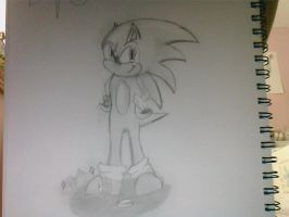 Sonic the Hedgehog 2 by jhhgdhjfdtyjvcxdfghj
