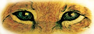 Eye of the Lion -Crayon- (1984) by SilvioGiacomini