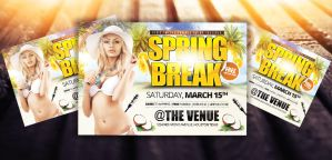 Spring Break / Summer Party | Horizontal Flyer by LouisTwelve-Design