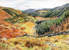 Glenmacnass, Laragh Co.Wicklow by SuzanneHole