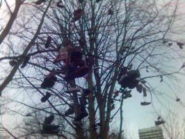 Newcastle shoe tree by warthogrampage