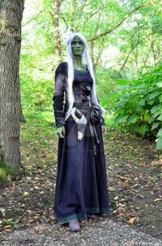 Wraith Queen Cosplay by shrye