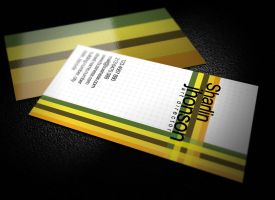 Professional Business Card by graphcoder