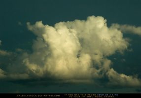 Baby Storm Cloud by SalsolaStock