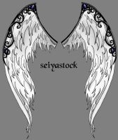 Ornate Angel Wings by seiyastock
