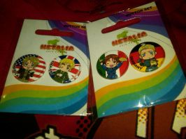 AMERICA,ENGLAND,GERMANY AND ITALY PINS by lisabean