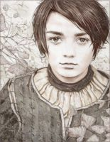 Arya Stark by An7Dash
